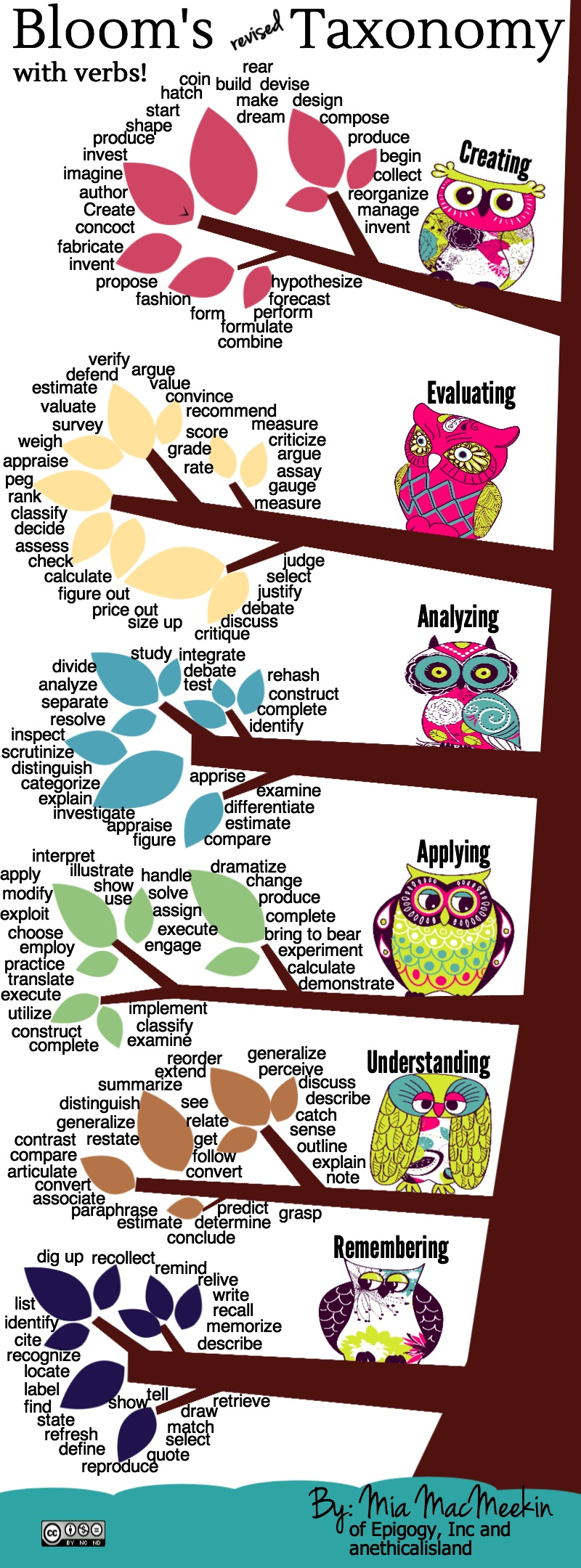 Bloom's Revised Taxonomy with Verbs by Mia MacMeekin
