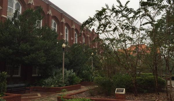 Blog: Overcast @UF & grad student tour of Special Co…